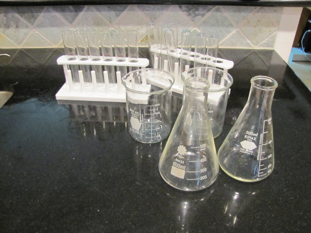 Halloween decorations test tubes and beakers
